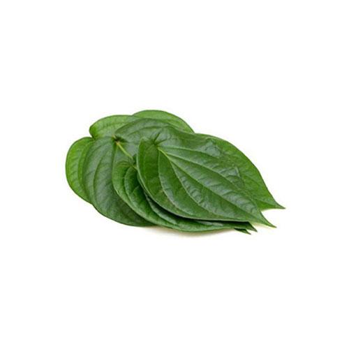 Betel Leaves, Kolkata Bangla Pan, 30 Pc